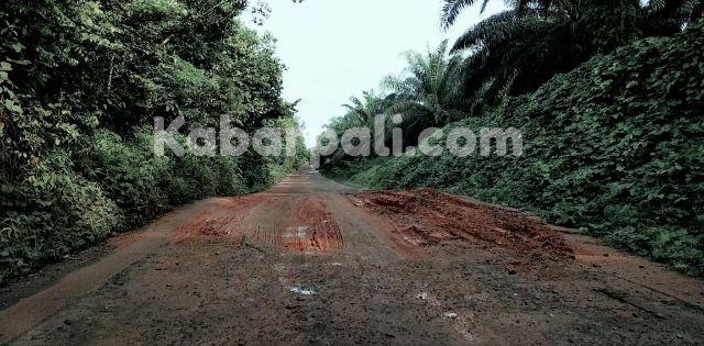 Idak Senonoh! Armada Logging Rusak Jalan, Lalu ditambal Pakai Tanah Liat