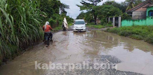 Ini Tiga Ruas Jalan Provinsi yang Rusak di PALI dan Tak Kunjung diperbaiki
