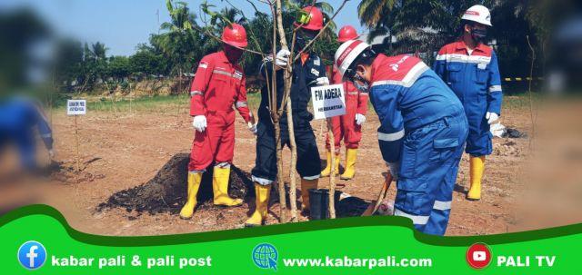 Peringati Hari Lingkungan Hidup, Adera Field Hijaukan WKP